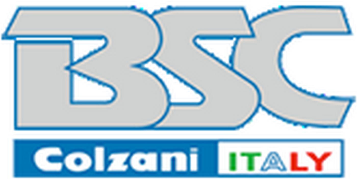 Logo BSC